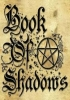 book of shadows,BOS,  witchcraft spell book,grimoire